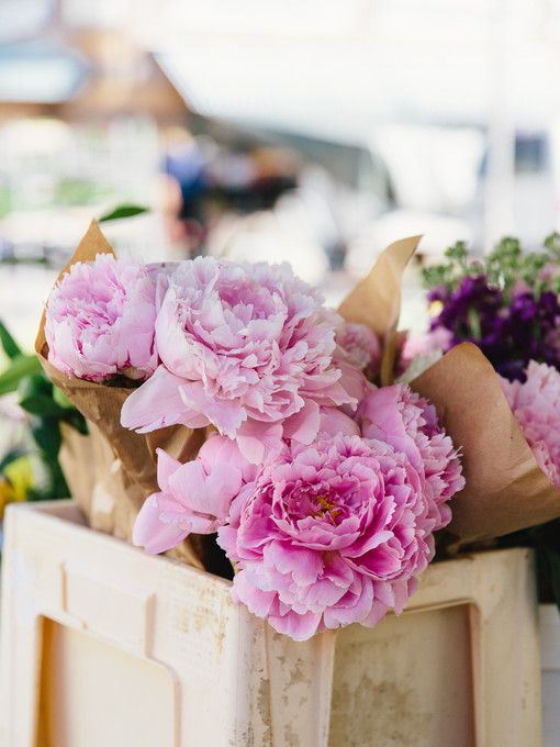 绝美小清新花朵高清唯美