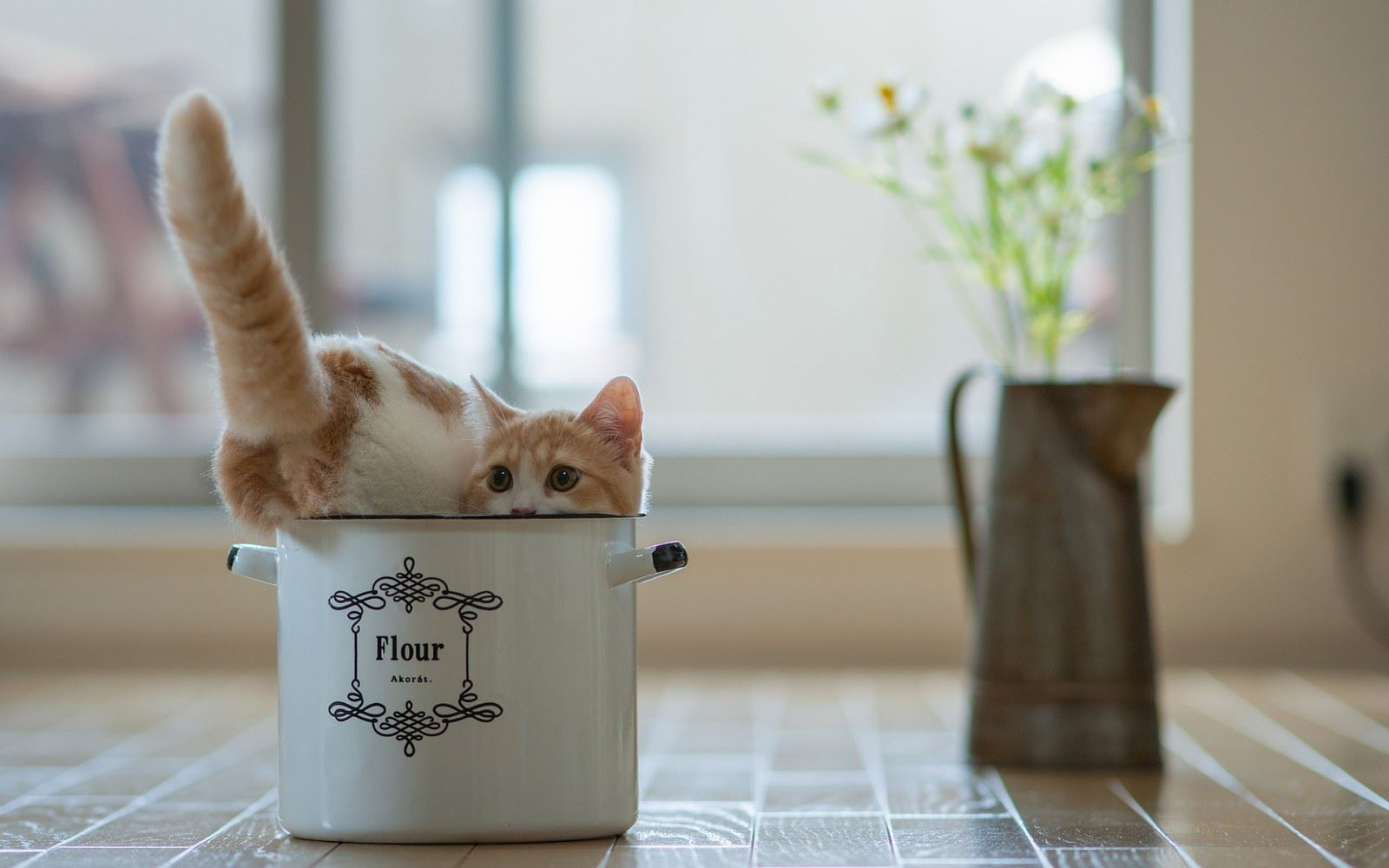 单品咖啡逸美时光意境图片