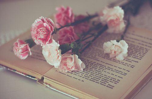唯美花朵意境图高清图集