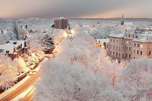 唯美好看的冬季雪景lomo意
