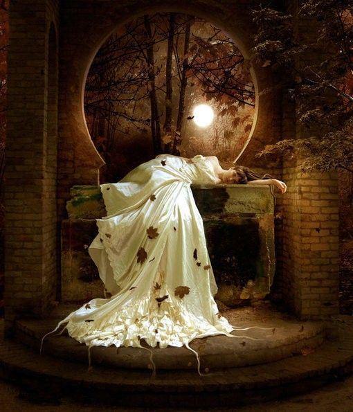 高贵唯美婚纱大全图片