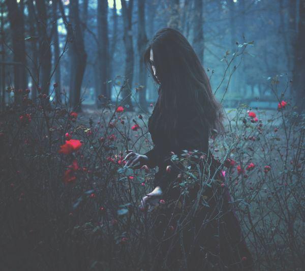 伤感女生玫瑰花花田低气