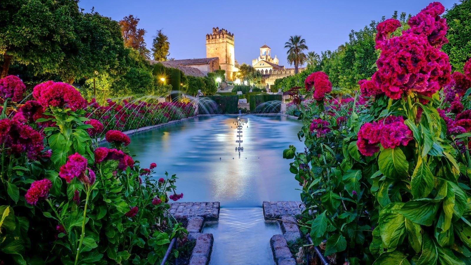 花丛锦簇喷泉水池唯美园