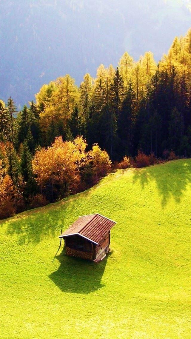 绿色草原小树林小木屋唯美风景高清图片